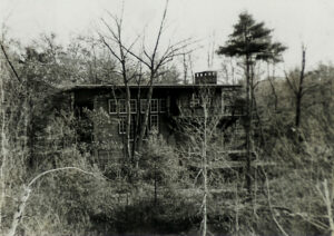 completed Fite house, behind the trees